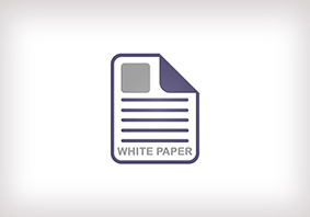 datopic White Papers